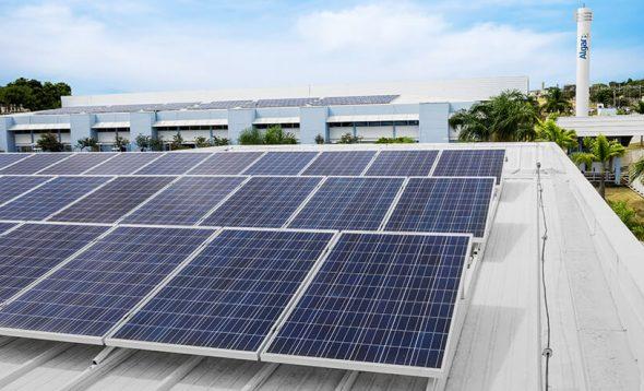 Sustentabilidade: inovação e tecnologia a serviço das empresas e clientes